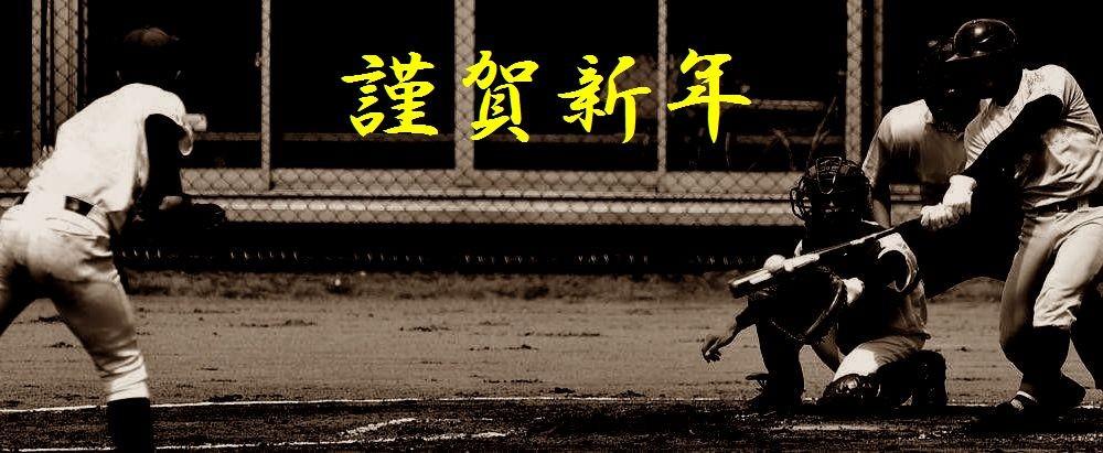 石川県高等学校野球連盟   石川...